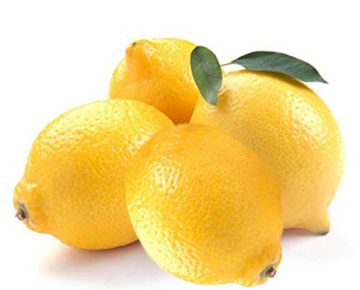 Manfaat Lemon Untuk Ginjal Dan Kandung Kemih